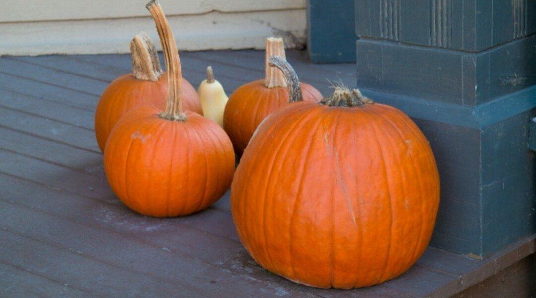 Pumpkin Carving Safety for Kids